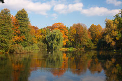 Autumn Royalty Free Stock Photography