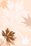 Autumn. Background with autumn leaves (vector royalty free illustration