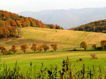 Autumn. Autumn landscape in Czech Republic Stock Photo