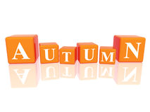 Autumn in 3d cubes Stock Image