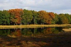 Autumn. Mirror view of an autumn scene made last year Stock Photos