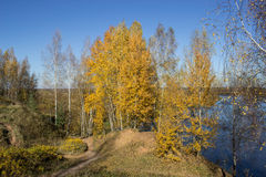 Autumn005 imagem de stock royalty free