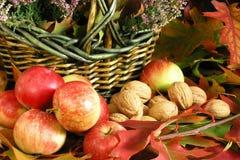 Autumn. Cornucopia - fruits on colorful leaves Stock Photo