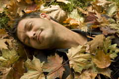 Autumn. Man lying on the ground feeling happy in fall time royalty free stock image