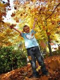 Autumn. Little boy plays with autumn leaves Royalty Free Stock Photography