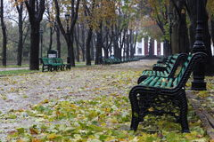 Autumn. Royalty Free Stock Photography