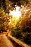 Autumn Royalty Free Stock Photography