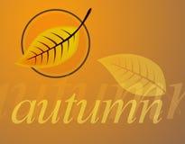 Autumn. Background Stock Photos