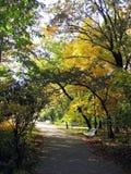 autumn στοκ εικόνες με δικαίωμα ελεύθερης χρήσης
