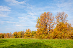 Autumn abandoned golf course. Beautiful Stock Images
