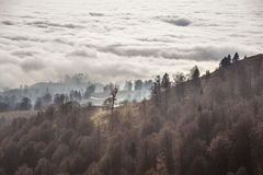 Autumn above the clouds Stock Photography