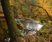 Autumn Above The Falls Royalty Free Stock Images