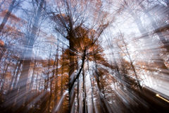 Autumn in Abruzzo royalty free stock images