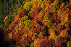 Autumn in Abruzzo in Italy Stock Photos