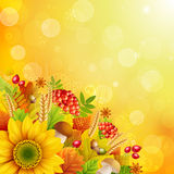 Autumn abstract background. With colorful leaves. Vector illustration Royalty Free Stock Photography