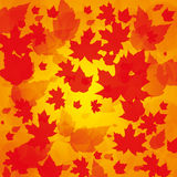 Autumn abstract background. With leaf Royalty Free Stock Photos