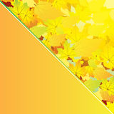 Autumn abstract background. With leaf Royalty Free Stock Photo