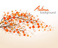 Autumn abstract background with colorful leaves. Vector Stock Image