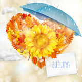 Autumn abstract background. EPS 10 Royalty Free Stock Photography