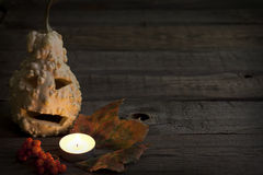 Autumn abstract background with halloween pumpkin Royalty Free Stock Images
