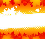 Autumn abstract background. Silhouettes of maple leaves on an orange background Stock Photos
