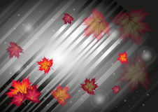 Autumn abstract background. Vector illustration Royalty Free Stock Images