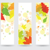 Autumn abstract banner set. With leaf Royalty Free Stock Photography