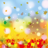 Autumn abstract colorful illustration. Autumn colorful abstract leaf illustration Royalty Free Stock Photos