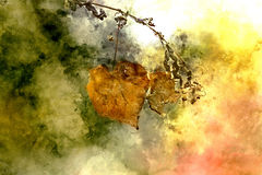 Autumn abstract. Detail Autumn leaves artistic in watercolor optics with texture Royalty Free Stock Image