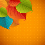 Autumn abstract fall leaves RASTER background Stock Images