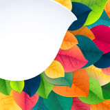 Autumn abstract fall leaves vector background Stock Photography