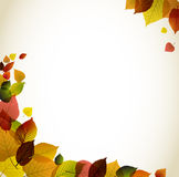 Autumn abstract floral background Royalty Free Stock Photo