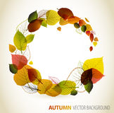 Autumn abstract floral background Royalty Free Stock Photos
