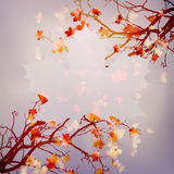 Autumn abstract floral background. EPS 10 Royalty Free Stock Photo