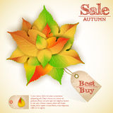 Autumn abstract floral sales background Stock Photo