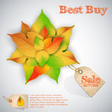 Autumn abstract floral sales background Stock Images