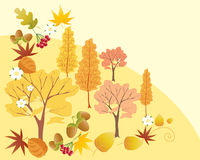 Autumn abstract Royalty Free Stock Images