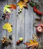 Autumn abstract leaves and signs background Royalty Free Stock Images