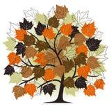 Autumn - abstract tree Stock Photos