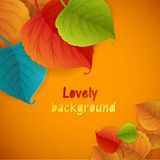 Autumn abstract vector background. Stock Images