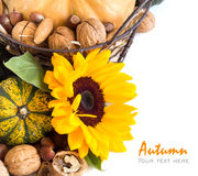 Autumn abundance Stock Photography