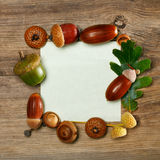 Autumn acorn frame Stock Images