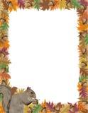 Autumn Acorn Leaf Border Royalty Free Stock Images