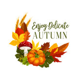 Autumn acorn leaf, pumpkin vector greeting poster Royalty Free Stock Photography