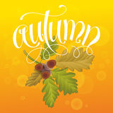 Autumn with Acorn and Leaves. Autumn Background. Hand Lettered Text and Leaves with Acorn stock illustration
