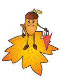 Autumn acorn and maple leaf. The cheerful autumn acorn walks on the fallen yellow maple leaf and holds an umbrella in his hand Royalty Free Stock Image