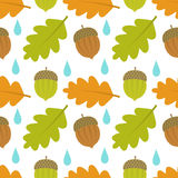 Autumn acorn seamless pattern Royalty Free Stock Photography