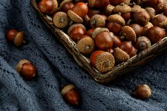 Autumn and acorns in a basket. Autumn fruit of acorn on the warm blue fabric in a basket Royalty Free Stock Photos