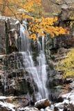 Autumn Acquerino Italy Stock Images