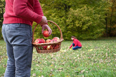 Autumn activities. Couple relaxing outdoors and using autumn activities royalty free stock images